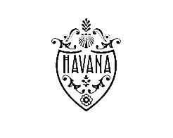 Havana logo retina zwart 401dpi small for footer